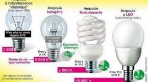 Interdiction des ampoules halogènes. Vos questions, nos réponses