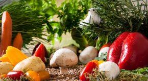Alimentation bio. Les jeunes consommateurs rebattent les cartes